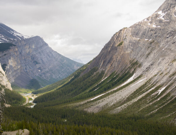 Jasperin kansallispuisto, Icefields Parkway