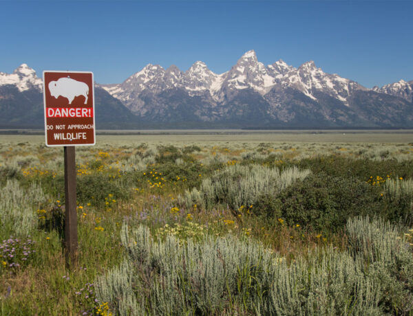 Grand Tetonin kansallispuisto, Wyoming