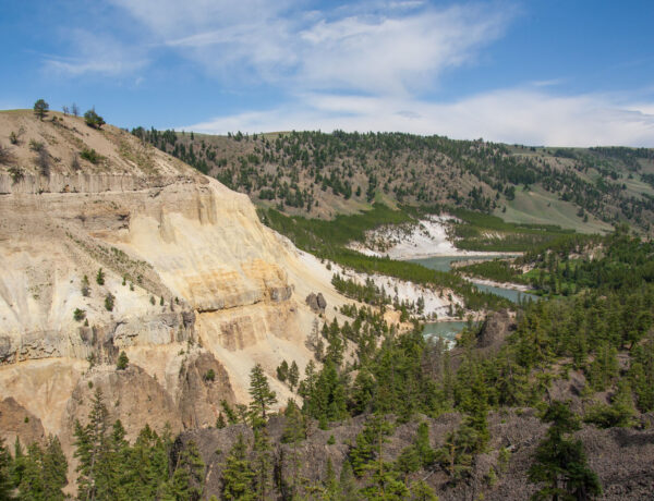 Yellowstone road trip