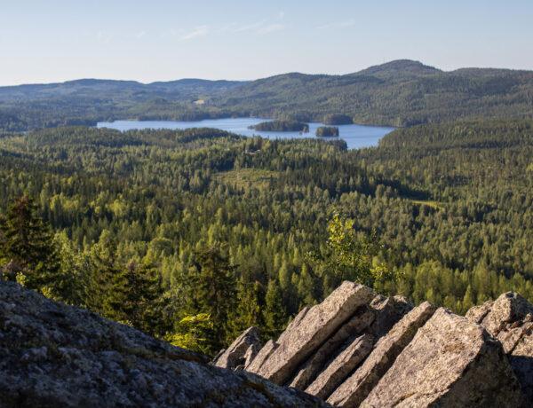Ryläyksen kierros, Kolin kansallispuisto