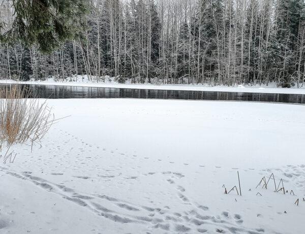 Talviretkeily Etelä-Suomessa